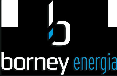 Logo Borney Legnami
